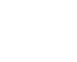 IEC+ Engineering Values